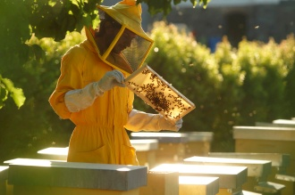Natural Beekeeping in Sicily - Societàˆ Agricola Nero D'Ape
